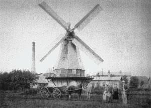 Die Mühle Otto Frauen